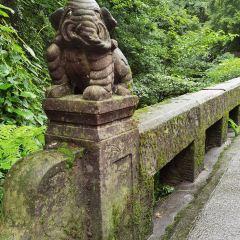칭청산(청성산) 여행 사진