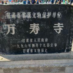 木塔寺用戶圖片