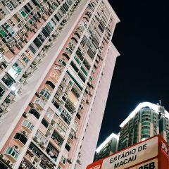 氹仔島用戶圖片