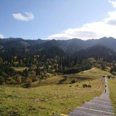 那拉提国家森林公園のユーザー投稿写真