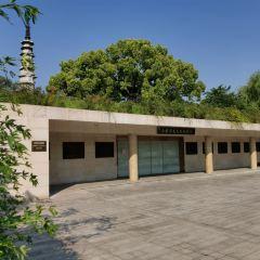 바이타공원 여행 사진