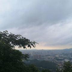 岳麓山用戶圖片