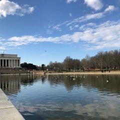 Lincoln Memorial Reflecting Pool User Photo