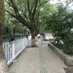 후난대학 여행 사진