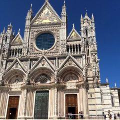 Duomo di Siena User Photo