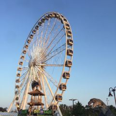 Niagara Skywheel User Photo