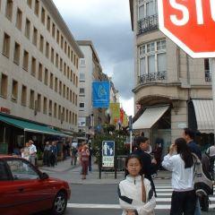 憲法廣場用戶圖片
