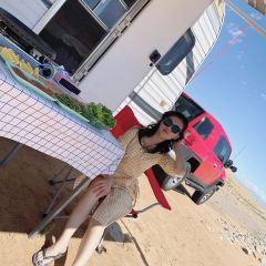 Desert Safari User Photo