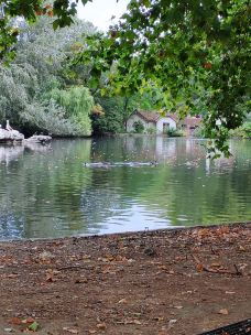圣詹姆斯公园-伦敦-E22****58