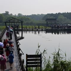 Qin Lake National Wetland Park User Photo