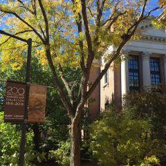 哈佛大學用戶圖片