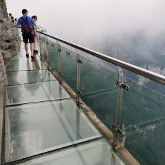 天門山玻璃棧道用戶圖片