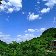 펑황산 국가삼림공원 여행 사진