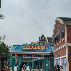 成都海昌極地海洋公園のユーザー投稿写真