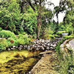 Edwards Gardens User Photo