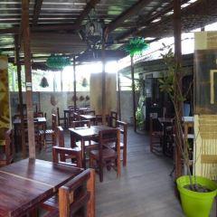 Limbe Wildlife Centre User Photo