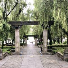 八詠公園用戶圖片