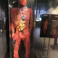 生命の神秘博物館のユーザー投稿写真