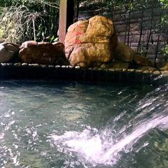 明月山維景國際溫泉用戶圖片