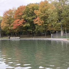 蒙特利爾植物園用戶圖片