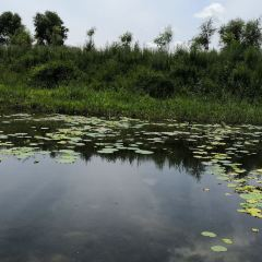 자룽자연보호구 여행 사진