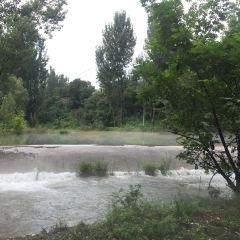 小天橋森林公園用戶圖片