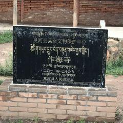 佐海黑教寺用戶圖片