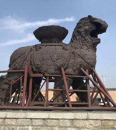 沧州游记图文-不平凡的庚子年简约乐亭海边和狮城游
