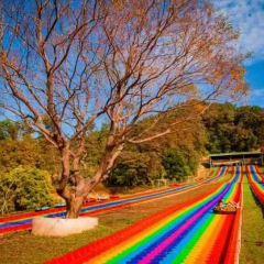 난다산 디스커버리 공원 여행 사진