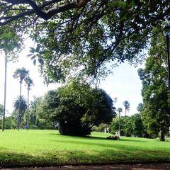 Albert Park User Photo