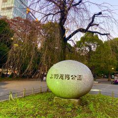 Ueno Park User Photo