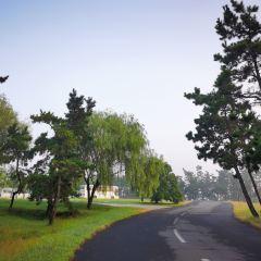 青松嶺森林公園用戶圖片