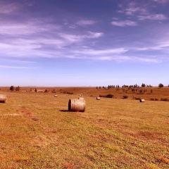 錫林郭勒大草原用戶圖片