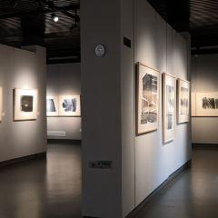 Heilongjiang Art Museum User Photo