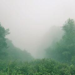駝梁風景區用戶圖片