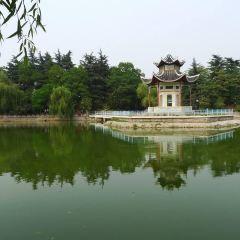 Yuji Park User Photo