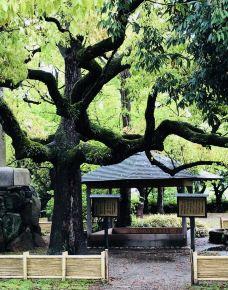 丰国神社-大阪-小凌60