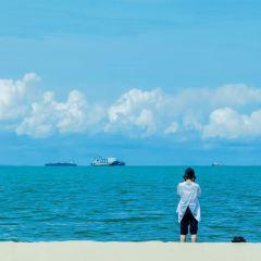 西秀海灘用戶圖片