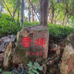 연태산공원 여행 사진
