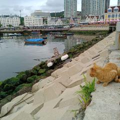 어부 부두 여행 사진