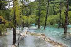 盆景池-黄龙风景名胜区