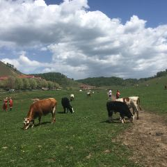 Guanshan Grasslands User Photo