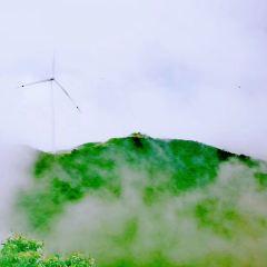 龍山國家森林公園用戶圖片