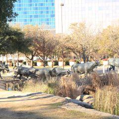Pioneer Plaza User Photo