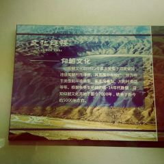 신러 유적지 박물관 여행 사진