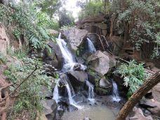 洛伊塔山-马赛马拉国家公园-137****7766