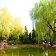 백화 공원 여행 사진