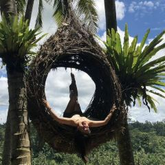 Bali Swing User Photo