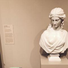 休斯頓美術館用戶圖片