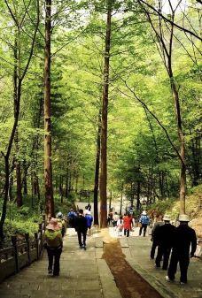 剑南春森林公园-绵竹-滇国剑客